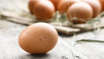 Welche Eier sollen's sein?